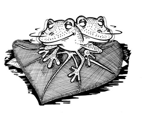 frog_mini