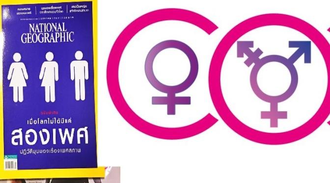 พรรคการเมืองกับสิทธิทางเพศ